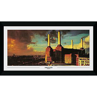 Pink Floyd dyr samler skrive ut 50x100cm
