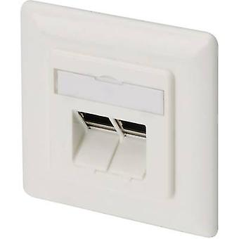 Network outlet Flush mount Insert with main panel and frame CAT 6A