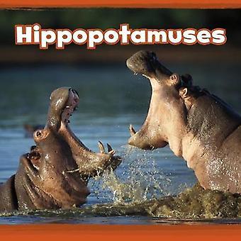 Hipopótamos de hipopótamos - libro 9781474761536