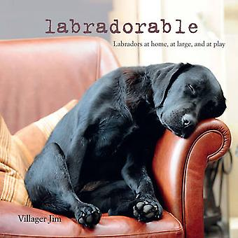 Labradorable - Labradors à la maison - en jeu - et au repos de villageois J