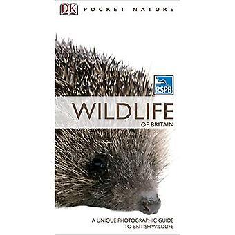 RSPB Pocket natur natur av Storbritannien