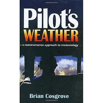 Tempo do piloto: A abordagem de bom senso para meteorologia