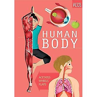 Discovery Plus: Human Body (Discovery Plus)