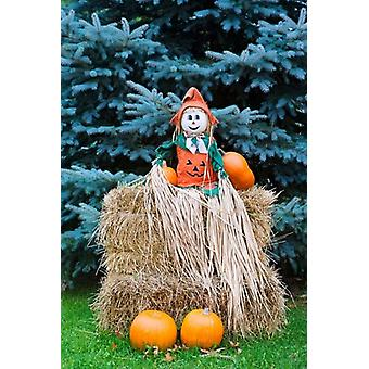 Wisconsin Autumn haystack Halloween decorations Poster Print by Jaynes Gallery