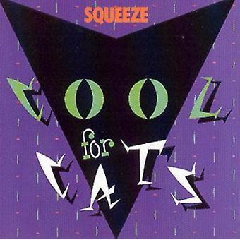 Cool For Cats by Squeeze