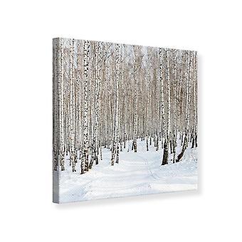 Canvas Print Birch Forest Tracks In Snow