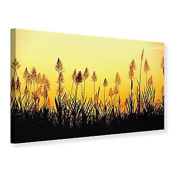 Canvas Print The Flowers Of The Field