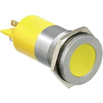 APEM LED indicator light White 24 Vdc Q22 F1 CXXW 24E