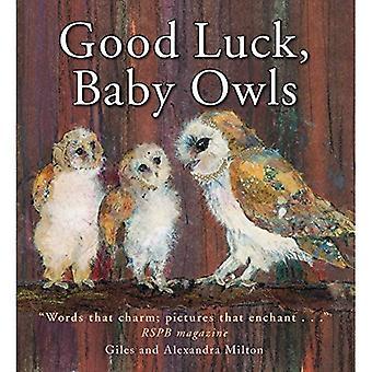 Good Luck, Baby Owls!