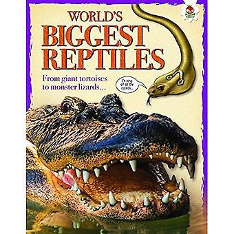 World's Biggest Reptiles: Extreme Reptiles
