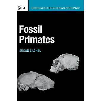 Fossile primater av Cachel & Susan
