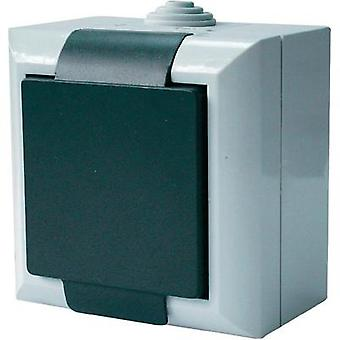 GAO PG socket Business-Line Grey 9167