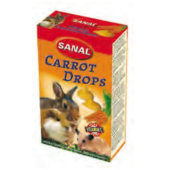 Sanal Carrot Drops Snacks for Rodents