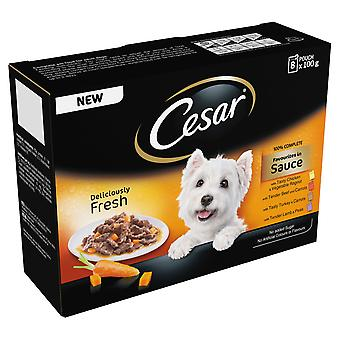 Cesar Pouch Deliciously Fresh Favourites In Sauce 8x100g (Pack of 6)