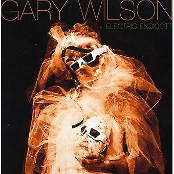 Gary Wilson - elektriske Endicott [CD] USA import