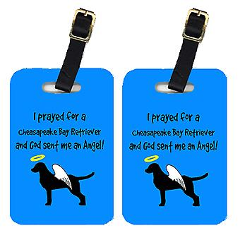 Carolines Treasures  AN1020BT Pair of 2 Chesapeake Bay Retriever Luggage Tags