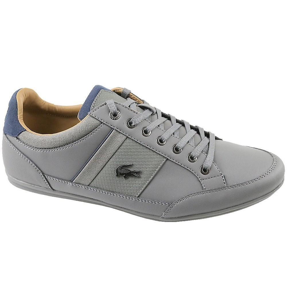 Lacoste Chaymon CAM0011G1N81 universal all year men shoes