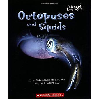Octopuses and Squids (Undersea Encounters)