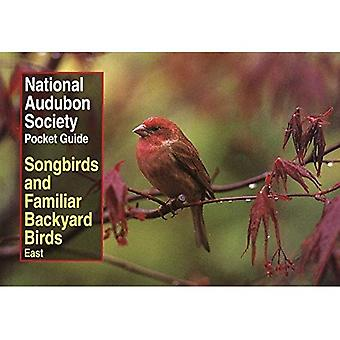 NAS Pocket Guide to Songbirds and Familiar Backyard Birds: Eastern Region: East: 2 (National Audubon Society Pocket Guides)