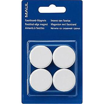 Round magnet white Maul 6177202
