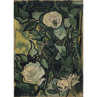 Vincent Van Gogh - Roses (5792039) Poster Print Giclee