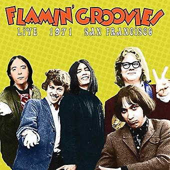 Flamin' Groovies - Live in San Francisco 1973 [CD] USA import