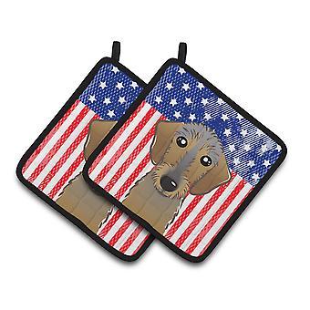 Американский флаг и Wirehaired такса пара прихватки
