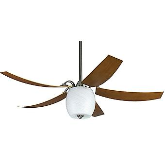 Fanimation ceiling fan THE MARIANO Pewter with lighting