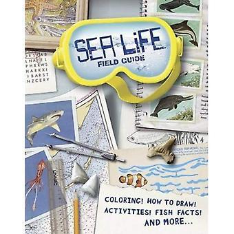 Sea Life Field Guide (Dover vetenskap böcker för barn)