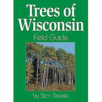 Trees of Wisconsin Field Guide (Our Nature Field Guides)