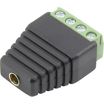 Jack socket Connector, straight Pin diameter: 4 mm Black Conrad Components 93013c1126 1 pc(s)