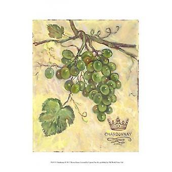 Chardonnay Poster Print by Theresa Kasun (10 x 13)
