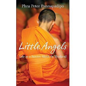 Små änglar: Verkliga livet berättelser av thailändska nybörjare munkar