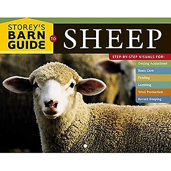 Storey's Barn Guide to Sheep (Storeys Barn Guide)