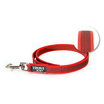 Julius K9 Correa Color & Gray IDC rojo 1 m (Dogs , Collars, Leads and Harnesses , Leads)