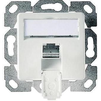 Network outlet Flush mount Insert with main panel CAT 6 1 port Telegärtner Alpine white