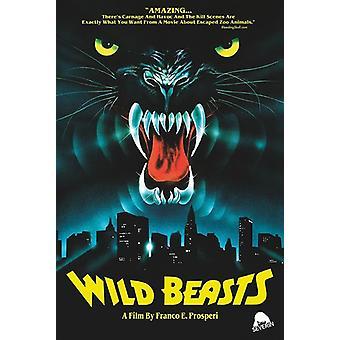 Vilde dyr [DVD] USA importerer