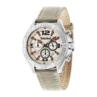 Timberland Men Watches Grey