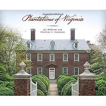 Plantations de Virginie