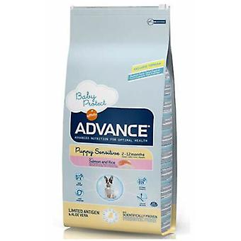 Advance Puppy Sensitive (Dogs , Dog Food , Veterinary diet , Dry Food)