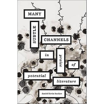 Muitos canais sutis - em louvor da literatura potencial por Daniel Lev