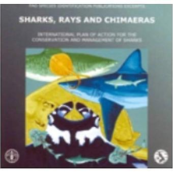 Hajar, rockor och chimärer: internationella handlingsplan för bevarande och förvaltning av hajar, Fao arter identifieringar publikationer utdrag