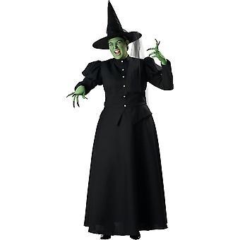 Evil Witch Plus Costume