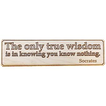 The only true wisdom wall plaque - raw wood 12x4in