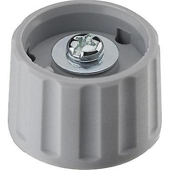 Control knob Grey (Ø x H) 28 mm x 18.2 mm Ritel 26 28 60 1 1 pc(s)