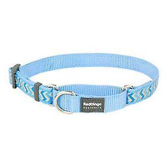 Red Dingo Correa Reflectante Ziggy Azul S (Dogs , Collars, Leads and Harnesses , Leads)