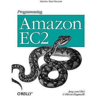 Programmation de Amazon Ec2