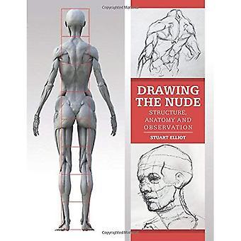 El desnudo de dibujo: estructura, la anatomía y la observación