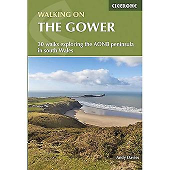 Walking on the Gower (Cicerone Walking Guides)