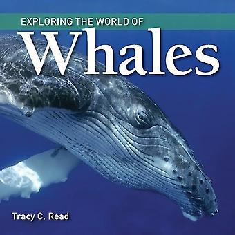 Exploring the World of Whales (Exploring the World� of...)